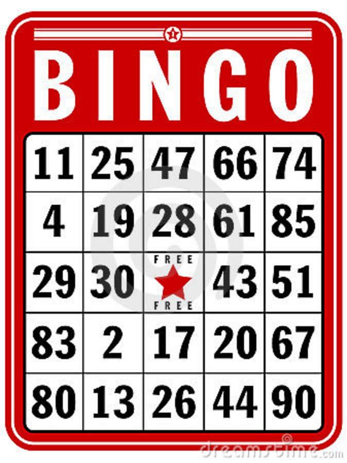 bingo on line