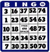 Partite Bingo Online 75 Palline